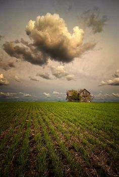 An abandoned farmhouse on the prairies in Alberta, Canada. #Canada. Uncle Mill could have lived here