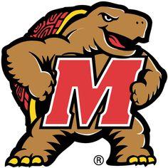 Maryland Terrapins. I'm a Maryland Turtle!