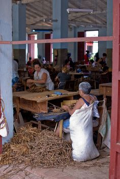 cuba..My mother was raised in a cigar factory that my grandfather owned but this is not the picture...they were told in 1963 to leave everything behind if they come to the USA