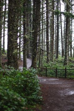 Best Oregon Hikes with Kids near Portland, Oregon