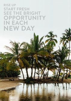 Rise up, start fresh and see the bright opportunity in each new day.