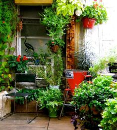 This garden, at 14' x 16', is a small space rooftop garden. It contains forty-five different types of plants, from vines to trees to lots of flowering plants. It's a flowering haven from spring lilacs through summer basils into fall mums.  http://www.apartmenttherapy.com/alejandros-rooftop-garden-my-great-outdoors-168226