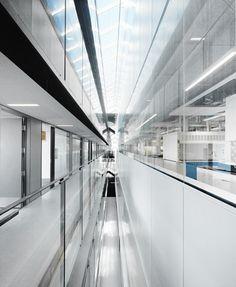 UBC Faculty of Pharmaceutical Sciences / Saucier + Perrotte architectes & HCMA. narrow skylight shaft
