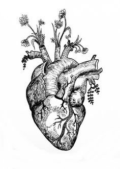 The cryptic chemist art anatomisch hart, tatoeage ideeën, tatoeages. Tattoos Masculinas, Feather Tattoos, Trendy Tattoos, Flower Tattoos, Tattoo Drawings, Tattoos For Guys, Sleeve Tattoos, Tattooed Guys, Skull Tattoos
