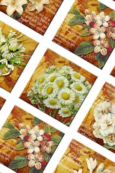 Digital Collage Sheet  White Flowers 1x1 inch images
