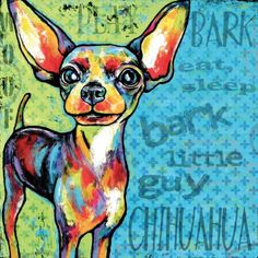 Chihuahua II Painting Print on Wrapped Canvas, Multicolor