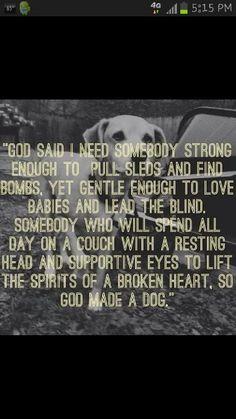 Must Love Dogs ♥ https://seniorsource.com/