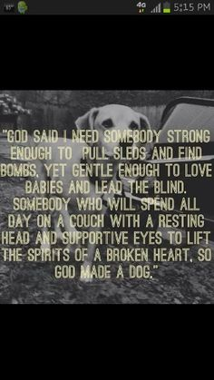Must Love Dogs ♥