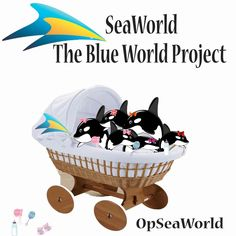 #SeaWorld unveil their Blue World project! :D #OpSeaWorld