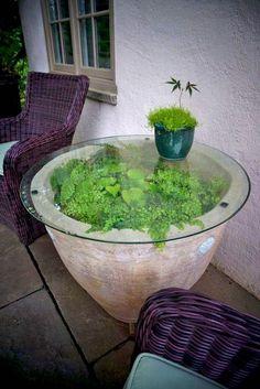 Garden/houseplant decor #gardendecor