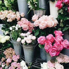 pink roses #libertylondon