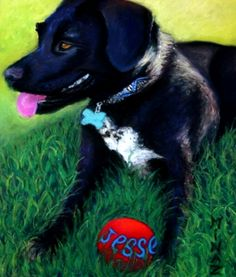 Minaz Jantz, 'Jesse Sayz THROW the Ball' pastel 11x9 Art Gallery, Pastel, Pets, Animals, Animals And Pets, Animales, Art Museum, Cake, Fine Art Gallery