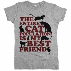 The Entire Cat Population Womens Tee Grey