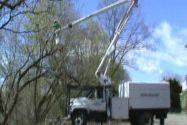 Videos - ARBORMORE TREE Tree Cutter, Videos