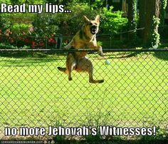 Read my lips...  no more Jehovah's Witnesses!