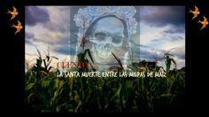 ESPECIAL DÍA DE MUERTOS. La santa muerte entre las milpas de maíz