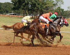 Fredericksburg, Texas Horse Races -- Live Pari-Mutuel Horse Racing   July 7 & 8, 2012  • July 21 & 22, 2012  • August 11 & 12, 2012  • August 25 & 26, 2012 www.gillespiefair.com