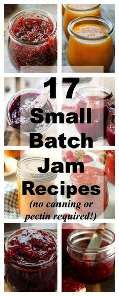17 Small-Batch Jam Recipes That Don't Require Canning or Pectin 17 Small Batch Jam Recipes Collage Canning Tips, Canning Recipes, Freezer Jam Recipes, Peach Jam Recipes, Rhubarb Jam Recipes, Canning Labels, Freezer Meals, Chutneys, How To Make Jam