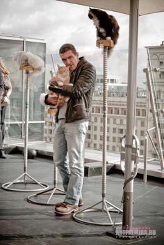 Antonio Banderas with cats