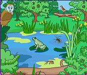 Natural Science resources for Primary Education.