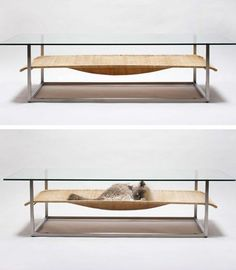 Japanese designers of Koichi Futatsumata + Partners of Case-Real tap into this seemingly universal feline impulse with a creative combination facilitating both cat naps and coffee klatsches.