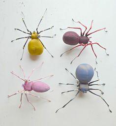 summer spider group med