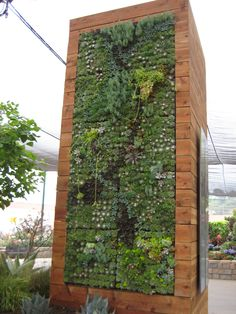 A living wall made of succulents (by Falling Waters Landscape). Living Wall Planter, Diy Wall Planter, Succulent Wall Planter, Vertical Succulent Gardens, Diy Planters, Succulents Garden, Patio Wall, Planter Ideas, Succulent Gardening