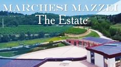 Marchesi Mazzei - The Estate. @marchesimazzei #mazzei #fonterutoli #tuscany #wine
