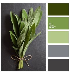 Lime and gray color palette 2074