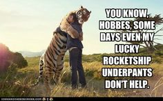 You know, Hobbes...