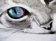 Christmas Cross Stitch Pattern, Unique Holiday Art Antistress Chart - New Site Cat Drawing, Painting & Drawing, Drawing Ideas, Cat Sketch, Realistic Drawings, Cat Tattoo, Tattoo Pics, Pencil Art, Crazy Cats