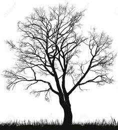 illustration-of-walnut-tree-in winter (Walnut being the Celtic birth tree for October 31)