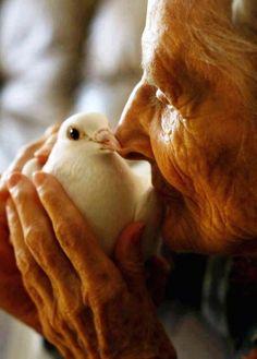 Love so tender