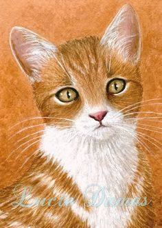 ACEO art print Cat #360 by Lucie Dumas