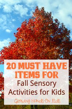 20 must have items you will need to create fall sensory activities for children.