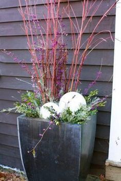 Inexpensive globe glass light covers (turned upside down) and stuffed with a string of lights to illuminate your holiday porch planters.