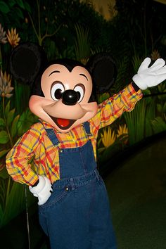 Farmer Mickey at the Garden Grill restaurant.  A nice low-key character dining experience--good for little ones.  Located in the Land pavilion at Epcot.