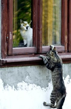 Romeo and Juliet...