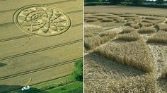 Wiltshire crop circle brings hundreds to farm - BBC News