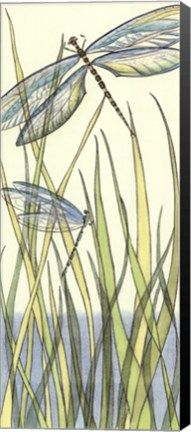 Small Gossamer Dragonflies I (P)