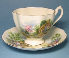 Vintage Queen Anne Country Cottage Tea Cup and Saucer