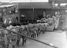 中國女兵赴沙場,登上運補艦趕赴揚子江南岸前線。