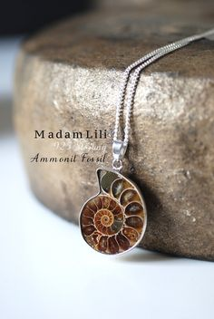 925 Sterling Silver Ammonite Fossil Necklace by MadamLili on Etsy Brown Shades, Ammonite, Natural Brown, Sterling Silver Necklaces, Jewelery, Lily, Chain, Pendant, Bracelets