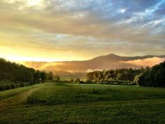 The Rocky Top Trail is located in Cades Cove, offers the perfect opportunity to create your own hike — if you wanted to trek the entire way through the Tennessee wilderness? Then you could go on for twelve miles!