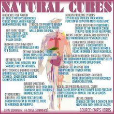 MEDICAL CORNER .... Natural Cures!