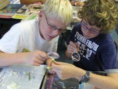 Hoe laat je kinderen ontdekkend leren? School, Leather, Theory, Biology