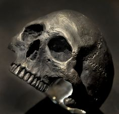 Anillo del cráneo mandíbula medio anillo de calavera de