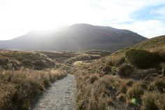 The trail entering Tongariro National Park at the Alpine Crossing. The one-day walk is considered one of the finest walks in New Zealand.