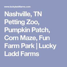 Nashville, TN Petting Zoo, Pumpkin Patch, Corn Maze, Fun Farm Park | Lucky Ladd Farms