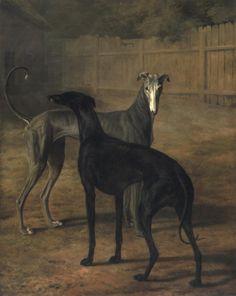 Rolla and Portia (1805)Oil on canvas by Jacques-Laurent Agasse.Musée d'Art et d'Histoire.